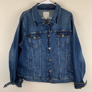Torrid plus size 3 denim jacket